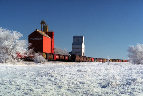 "Wooden grain elevators at Tompkins, Saskatchewan. ""The Necklace"""