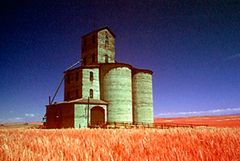Earliest concrete grain terminal at Lee, Washington