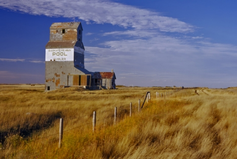 "Wooden Grain Elevator at Fusilier, Saskatchewan, ""Prairie Gold"""