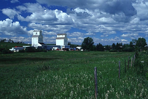Photograph of wooden elevators at Dewinton, AB