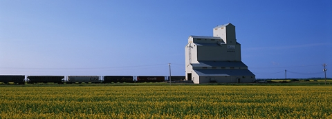 Image of wooden grain elevator at Mariapolis, Manitoba