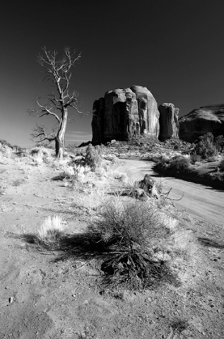 B+W image of dry desert 'Naked""