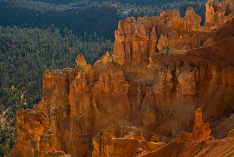 "Bryce Canyon Utah, entitled ""Canyon Light"""