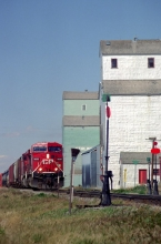 Wooden grain elevators and locomotive at Stirling, Alberta