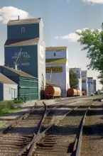 Photograph of wooden grain elevators at High River, Alberta