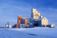 Image of wooden grain elevators at Spalding, Saskatchewan