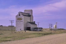 Image of wooden elevator at Flaxcombe, SK