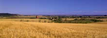 "Panoramic image, Wooden grain elevator, Prongua Saskatchewan ""Panoramic Pause"""