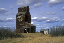 Photograph of wooden elevator at Butze, Alberta