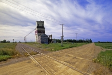 Photograph of wooden elevator at Bladworth, Saskatchewan