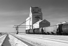 Photograph of wooden grain elevator at Harris, Saskatchewan