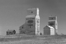 Old wooden grain elevators at Laura, Saskatchewan