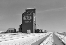 Wooden grain elevator at Tessier, Saskatchewan