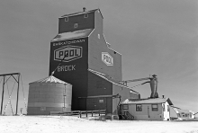 Wooden elevator at Brock, Saskatchewan