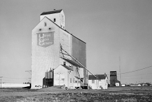 Wooden grain elevators at Yorkton, Saskatchewan