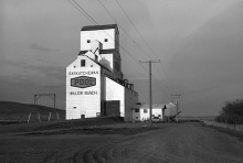 Wooden grain elevator at Willow Bunch, Saskatchewan