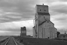 Photograph of wooden elevator at Battrum, SK