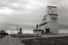Images of wooden grain elevators at Success, Saskatchewan