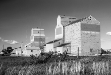 Image of wooden grain elevators at Spring Coulee, Alberta