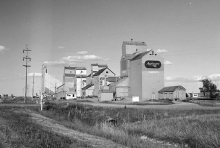 Wooden grain elevators at Magrath, Alberta