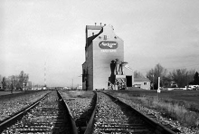 Photograph of wooden elevator at Carstairs, AB