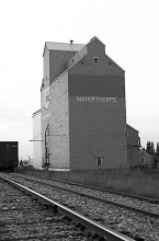 Photograph of wooden grain elevator at Mayerthorpe, Alberta