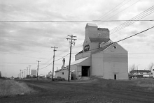 Photograph of wooden elevator at Beaverlodge, AB