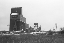 Photograph of wooden grain elevators at Manning, Alberta