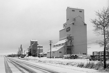 Wooden grain elevators at Nampa, Alberta