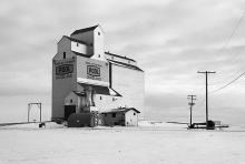 photograph of wooden grain elevator at Dodsland, Saskatchewan