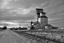 photograph of wooden grain elevator at Altario, Alberta